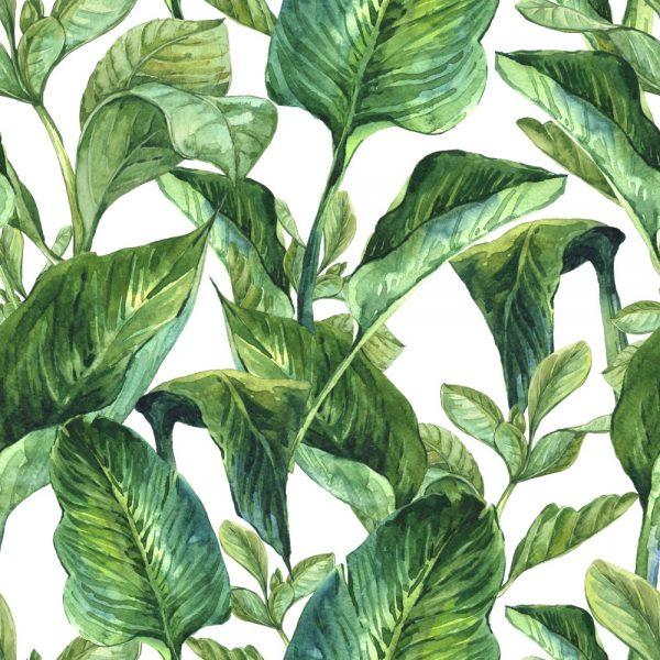 Papel de Parede Adesivo Folhagem Verde