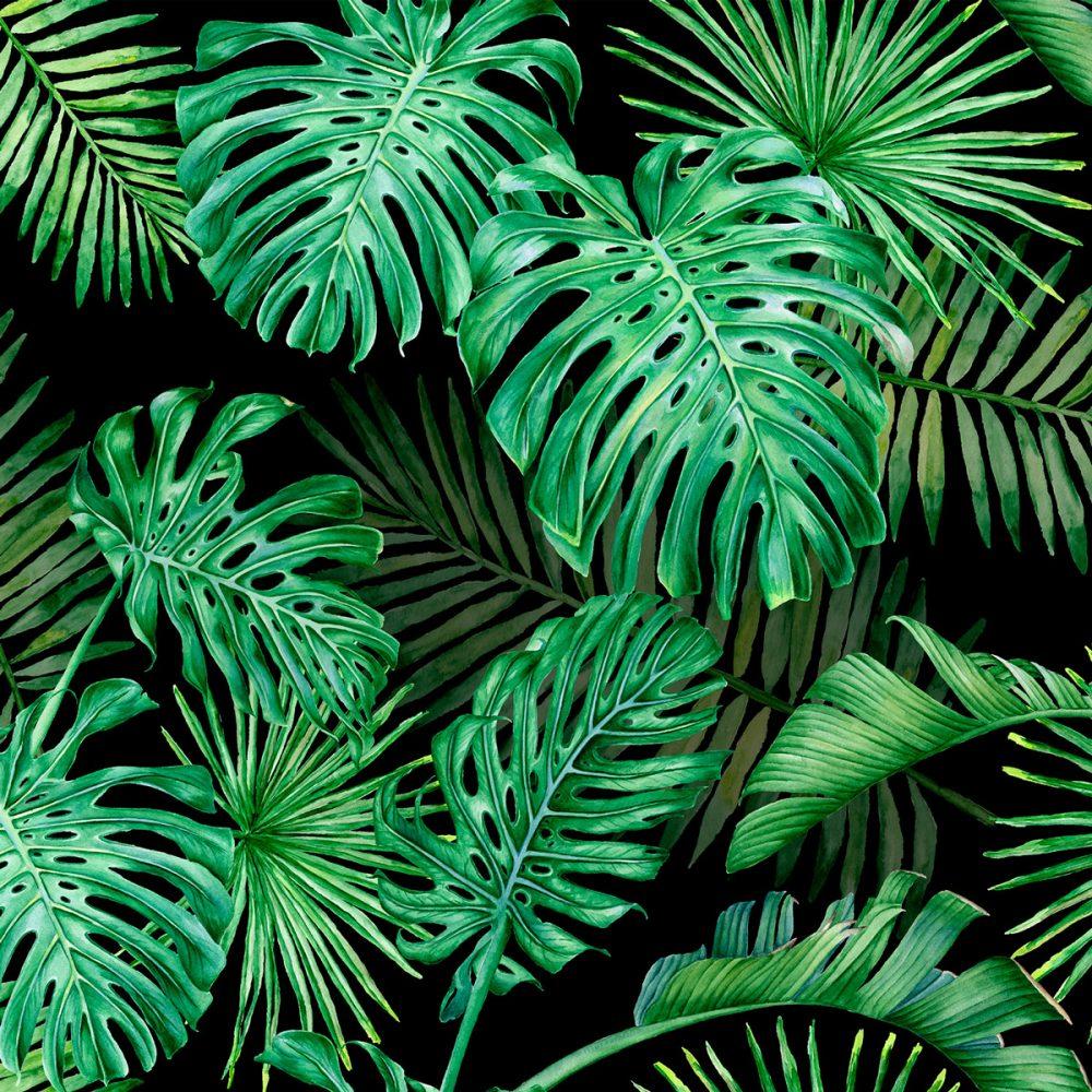 Papel de Parede Adesivo Floral Palmeiras Tropical Black